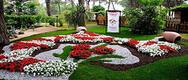 Mostra floreale Cervia Città Giardino: 47^ edizione 2019 - DAL 23 AL 30/05/2019